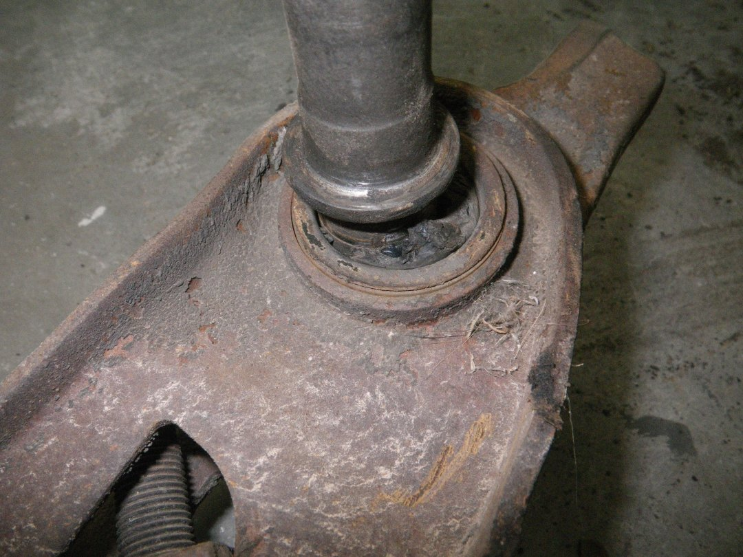 Control Arm Lower Bushing.JPG